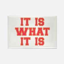 It Is What It Is Rectangle Magnet (10 pack)