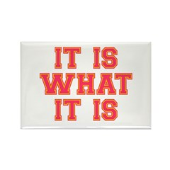 It Is What It Is Rectangle Magnet (100 pack)