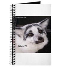 Shadow says What? Journal