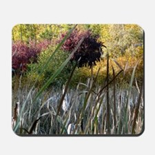 Fall Colors and Cattails Mousepad