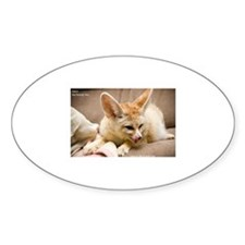 Flash the fennec fox licking Oval Decal