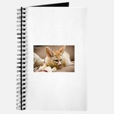 Flash the fennec fox licking Journal