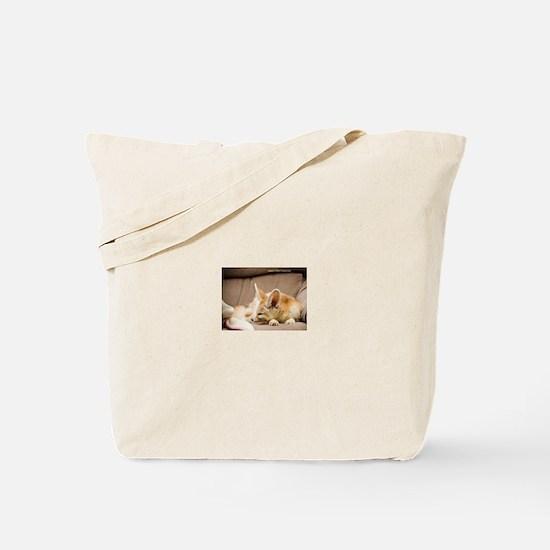 Flash the fennec fox snoozing Tote Bag