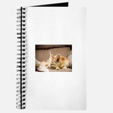 Flash the fennec fox snoozing Journal