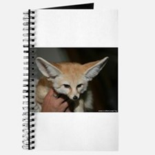 Flash the fennec fox Journal