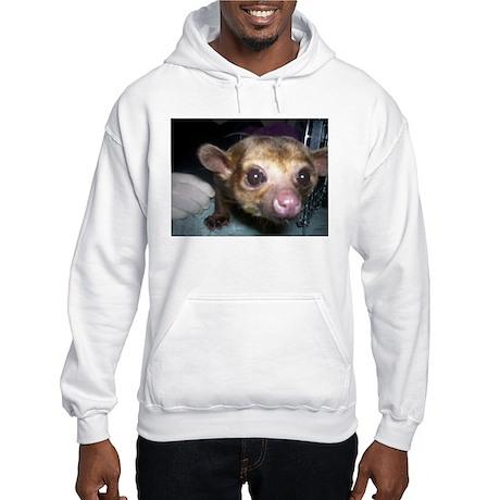 Guinness the kinkajou up clos Hooded Sweatshirt