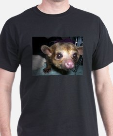 Guinness the kinkajou up clos T-Shirt