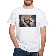 Guinness the kinkajou snoozin Shirt