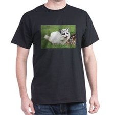 Shadow the Arctic Marble Fox T-Shirt