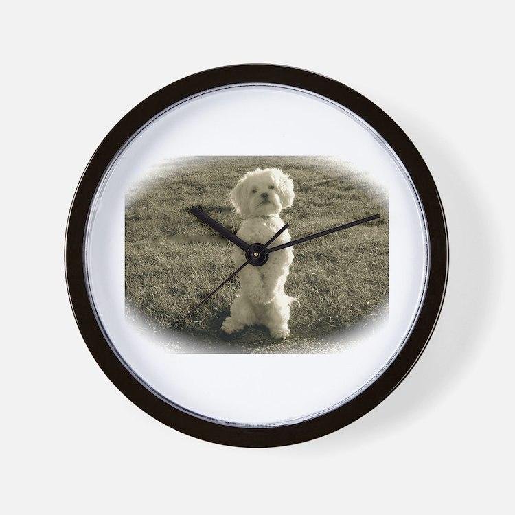 Cute Peekapoos Wall Clock