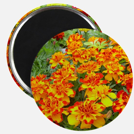 Red and Yellow Flowers Magnet