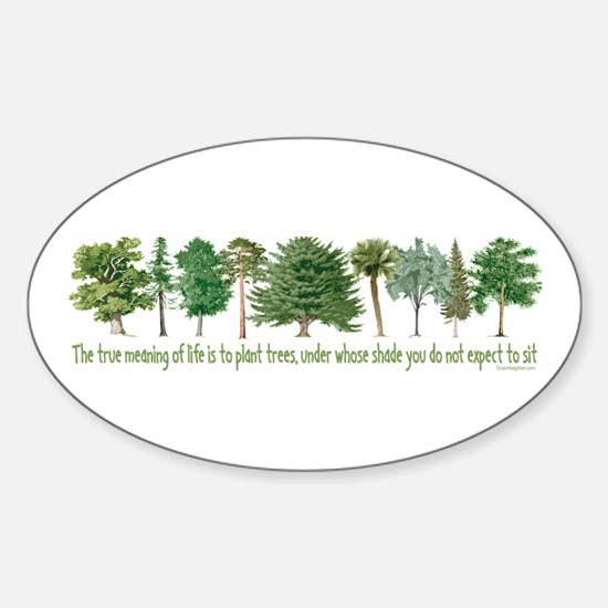 Plant a Tree Oval Decal