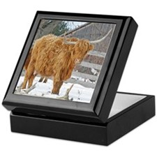 Highland Cattle Keepsake Box