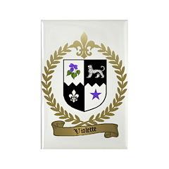 VIOLETTE Family Crest Rectangle Magnet