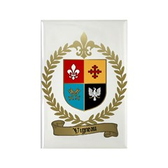 VIGNEAU Family Crest Rectangle Magnet