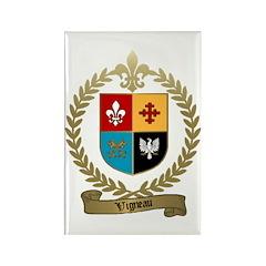 VIGNEAU Family Crest Rectangle Magnet (10 pack)