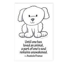 Loved an Animal Postcards (Package of 8)