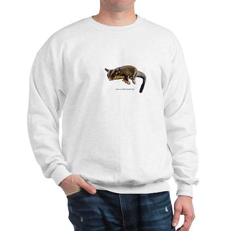 Baby Junior Sweatshirt