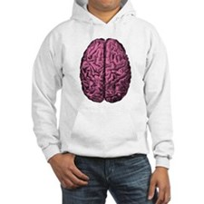 Human Anatomy Brain Hoodie