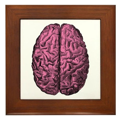 Human Anatomy Brain Framed Tile