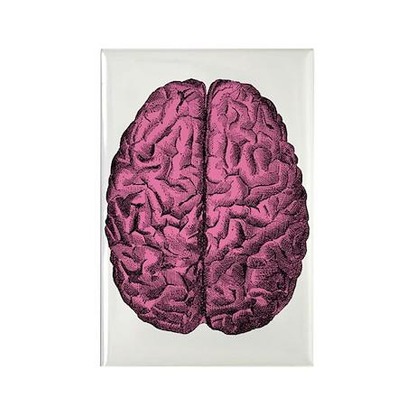 Human Anatomy Brain Rectangle Magnet