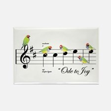 Ode to the Joy of Gouldian Finches Magnet