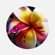 Plumeria_PhetPrayaLae Ornament (Round)