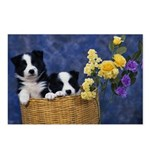 Retro Border Collie Postcards (Package of 8)