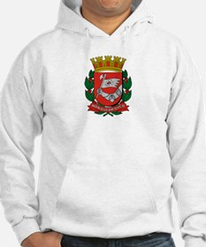 Unique Brazil coat of arms Hoodie