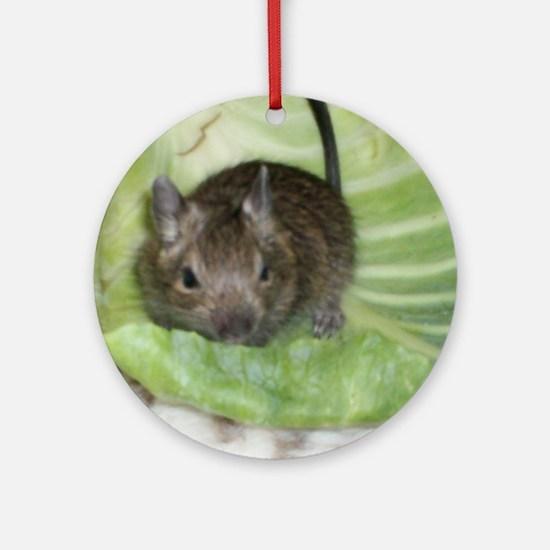 Baby Degu Ornament (Round)