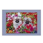 Retro Tibetan Spaniel Postcards (Package of 8)