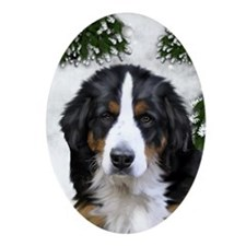 BERNESE MOUNTAIN DOG WINTER FOREST Oval Ornament