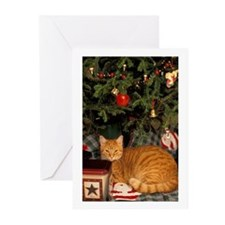 Cat_Greeting Cards (Pk of 10)