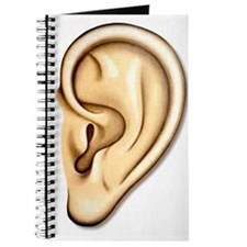 Ear Doctor Audiologists Audio Journal
