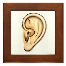 Ear Doctor Audiologists Audio Framed Tile