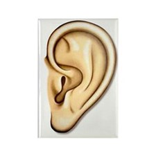 Ear Doctor Audiologists Audio Rectangle Magnet