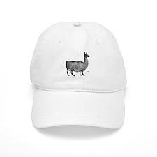 Llama Baseball Cap