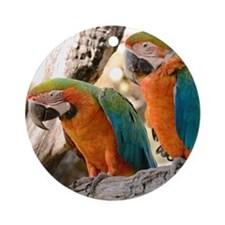 Harlequin Macaws Ornament (Round)