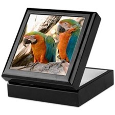 Harlequin Macaws Keepsake Box