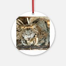 Canadian Lynx Ornament (Round)