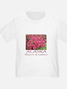 Alaska: flowers of summer T