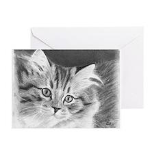 Kitten Greeting Cards (Pk of 20)