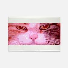 Calico Cat Face, Greta Rectangle Magnet (10 pack)