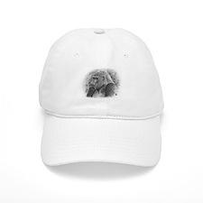Posing Gorillas Baseball Cap