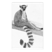 Lounging Lemur Postcards (Package of 8)