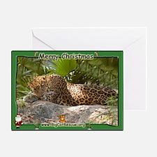#017 Leopard Christmas Card