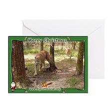007 Cougar Christmas Greeting Card