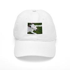 Sweet Bull Terrier Baseball Cap