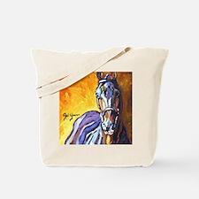 Holsteiner stallion - Carry On