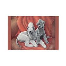 Bedlington Puppy Love Rectangle Magnet